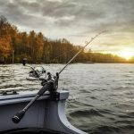 lựa chọn máy câu cá