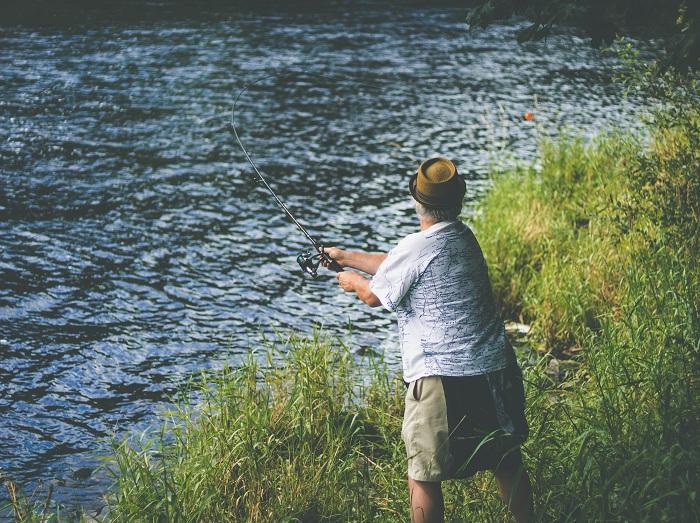 mồi câu cá rô phi