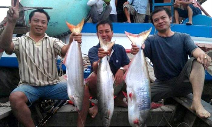 Nguồn Thức Ăn Của Cá Bông Lau