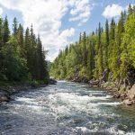 sông được hình thành như thế nào