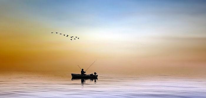 Thời Gian Đi Câu Cá Nước Mặn
